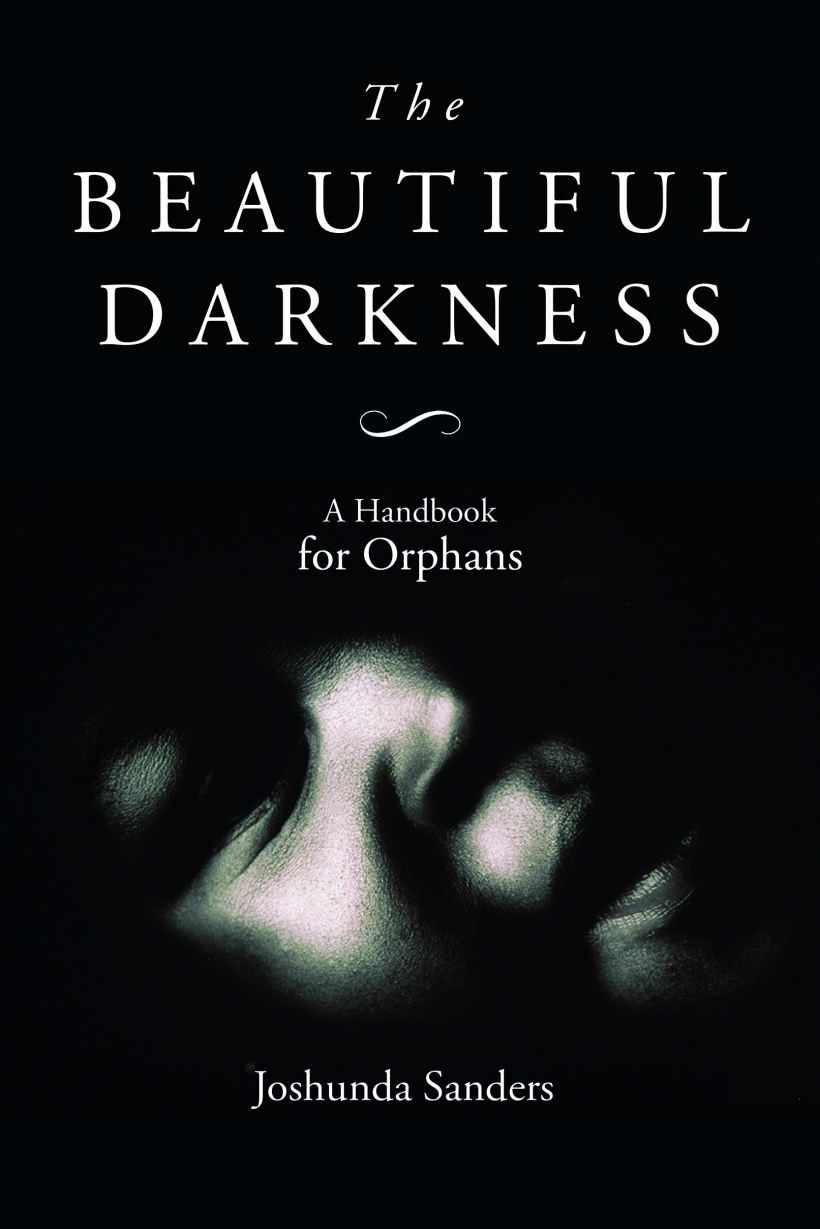 the-beautiful-darkness-cover-high-res